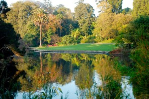 Royal-Botanic-Garden-Melbourne